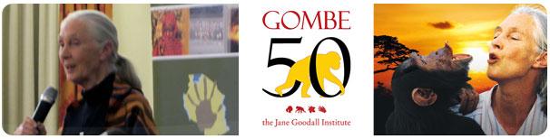 Gombe 50