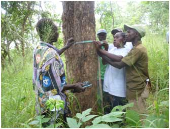 Villagers in Ruhoma village in Lindi getting practical knowledge of assessing carbon